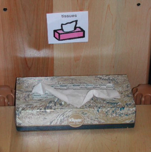 A box of tissues has a label and a picture above it to help children develop print awareness